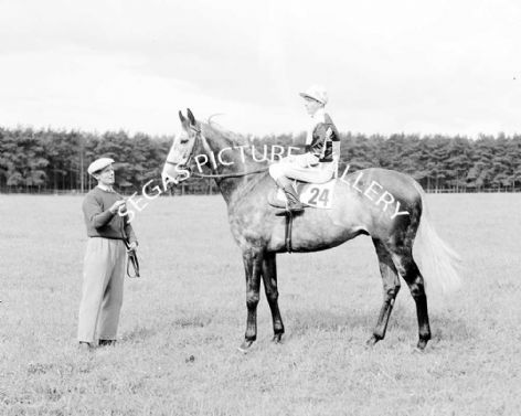 Racehorse Johns Court with Jockey B Lee